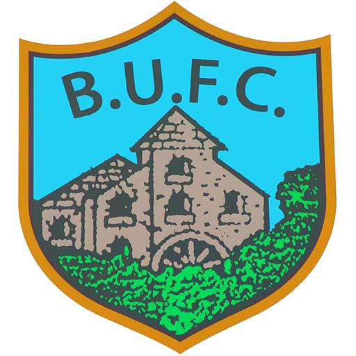 Ballynahinch United logo