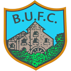 Ballynahinch United FC